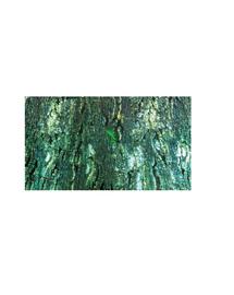 TRIXIE Fundal pentru terariu cu două fețe tropic / scoarță