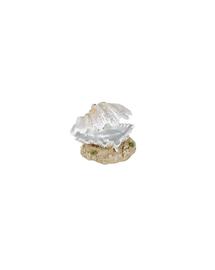 TRIXIE Decorațiune scoici cu perlă 9 cm