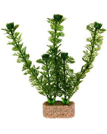 TRIXIE Plante pe piatră diametru 20 cm 6 buc.