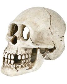 TRIXIE Decorațiune craniu 15 cm