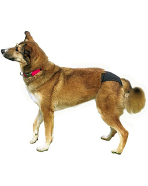 TRIXIE Chiloți pentru câini S 24-31 cm