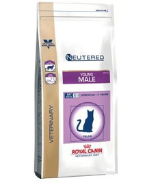 ROYAL CANIN Cat young male 10 kg