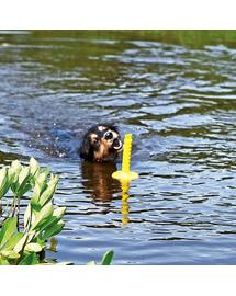 TRIXIE Jucărie pentru câini loc de joacă acvatic Mot Aqua