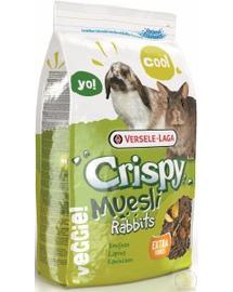 VERSELE-LAGA Crispy Muesli - Rabbits 20kg - amestec pentru iepuri