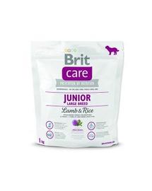 BRIT Care Junior Large Lamb & Rice 1 kg