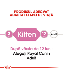 ROYAL CANIN Kitten 36 10 kg