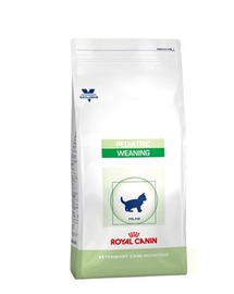 ROYAL CANIN Cat Pediatric Weaning 400 g