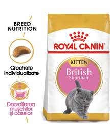 Royal Canin British Shorthair Kitten Hrană Uscată Pisică 400 g