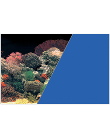 ZOLUX Fundal cu două fețe pentru acvariu 40 x 60 cm Coral / albastru