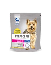 PERFECT Fit Adult (1 an) bogat în pui pentru câini de talie mică 5 x 825 g