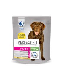 PERFECT Fit Adult (1 an) bogat în pui pentru câini de talie medie și mare 5 x 825 g