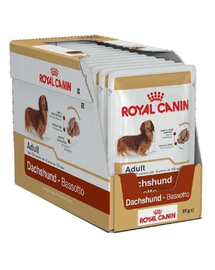 ROYAL CANIN Dachshund Adult 12x85 g
