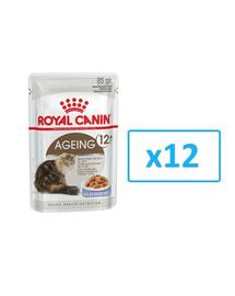 ROYAL CANIN Ageing +12 în aspic 12x85 g