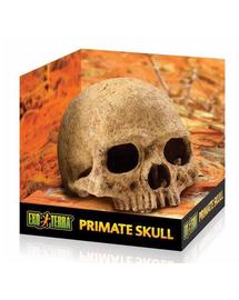 EXO TERRA Ascunzătoare craniu uman
