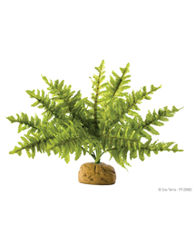 EXO TERRA Plantă artificială ferigă Boston Fern S