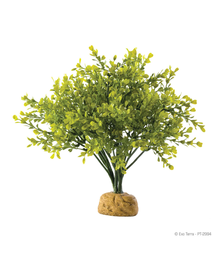 EXO TERRA Plantă artificială Boxwood Bush