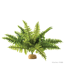 EXO TERRA Plantă artificială ferigă Boston Fern M