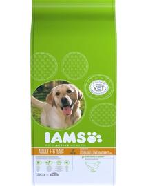 IAMS ProActive Health Adult Light in Fat for Sterilsed/Overweight - Hrană uscată pentru câini sterilizați/supraponderali 12 kg