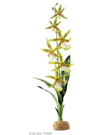 EXO TERRA Plantă artificială orhidee Spider Orchid