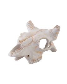 EXO TERRA Ascunzătoare craniu bivol - mic