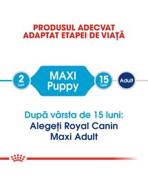 Royal Canin Maxi Puppy hrana uscata caine junior, 15 kg