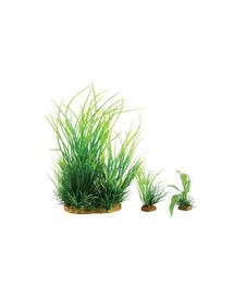 ZOLUX Plantă decorativă Plantkit Wiha model 1