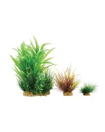 ZOLUX Plantă decorativă Plantkit Wiha model 2