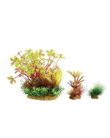 ZOLUX Plantă decorativă Plantkit Wiha model 4