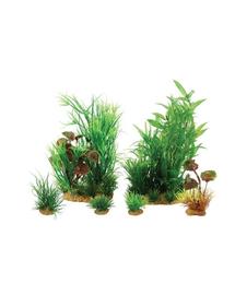ZOLUX Plantă decorativă Plantkit Jalaya model 2