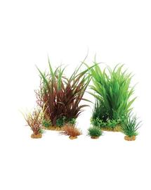 ZOLUX Plantă decorativă Plantkit Jalaya model 3