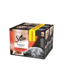 SHEBA Selection in Sauce juicy flavors 85g 12+12