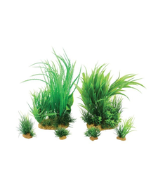 ZOLUX Plantă decorativă Plantkit Jalaya model 1