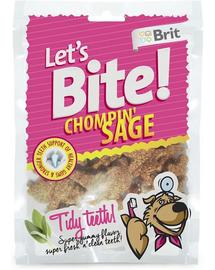 BRIT Care Lets Bite Dog Chompin Sage 150 g