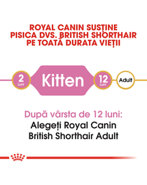 ROYAL CANIN kitten british shorthair 2 kg