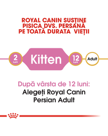Royal Canin Persian Kitten hrana uscata pisica junior, 400 g
