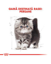 ROYAL CANIN Kitten persian 400 g