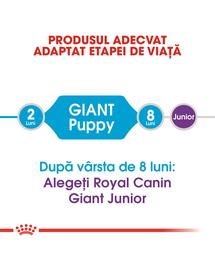 ROYAL CANIN Giant Puppy Hrană Uscată Câine 15 kg