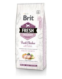 BRIT Fresh Puppy Hrană uscată cu pui și cartofi 12 kg