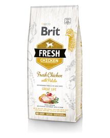 BRIT Fresh Adult Hrană uscată cu pui și cartofi 2,5 kg