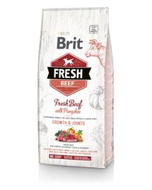 BRIT Fresh Puppy Large Hrană uscată cu vită și dovleac 12 kg