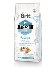 BRIT Fresh Adult Large Hrană uscată cu pește și dovleac 12 kg