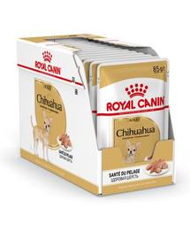 Royal Canin Chihuahua Hrană Umedă Câine 12x85 g