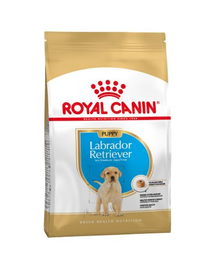 Royal Canin Labrador Puppy hrana uscata caine junior, 12 kg
