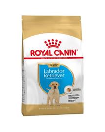 Royal Canin Labrador Puppy Hrană Uscată Câine 1 kg