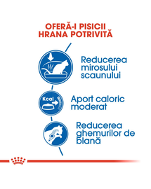 Royal Canin Indoor Adult hrana uscata pisica de interior, 4 kg