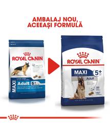 Royal Canin Maxi Adult Hrană Uscată Câine 5+ 15 kg