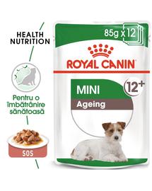 Royal Canin Mini Ageing 12+ Hrană Umedă Câine 12+ 12x85 g