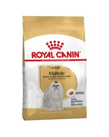 Royal Canin Maltese Adult Hrană Uscată Câine 0.5 kg