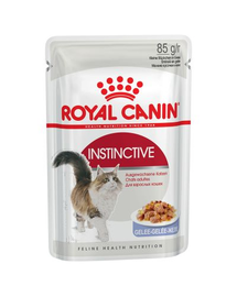 ROYAL CANIN INSTINCTIVE 85 g în aspic