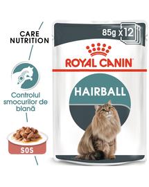Royal Canin Hairball Care Hrană Umedă Pisică 85 g x 12